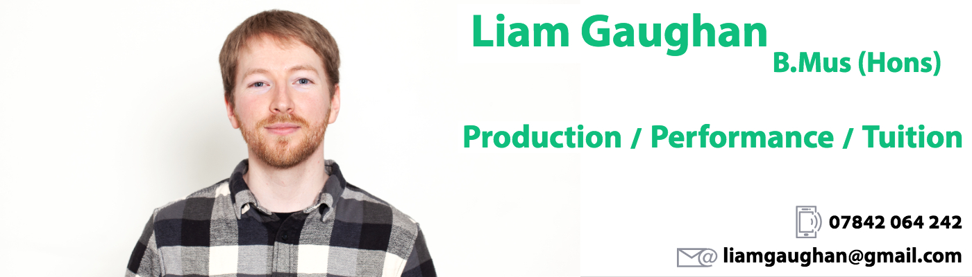 Liam Gaughan – Guitar Lessons, Bass Lessons in Newcastle Upon Tyne